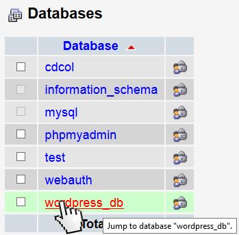 Select the WordPress database