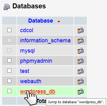 Select the WordPress database